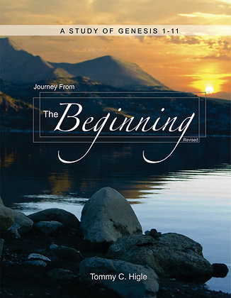 Journey From the Beginning, Revised (Genesis 1-11)