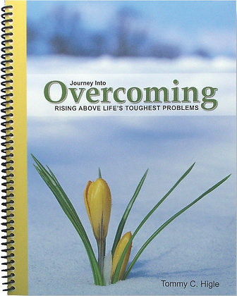 Journey Into Overcoming: Rising Above Life's Toughest Problems