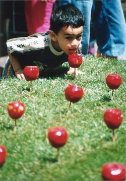 Temporäre Gärten Berlin 2001