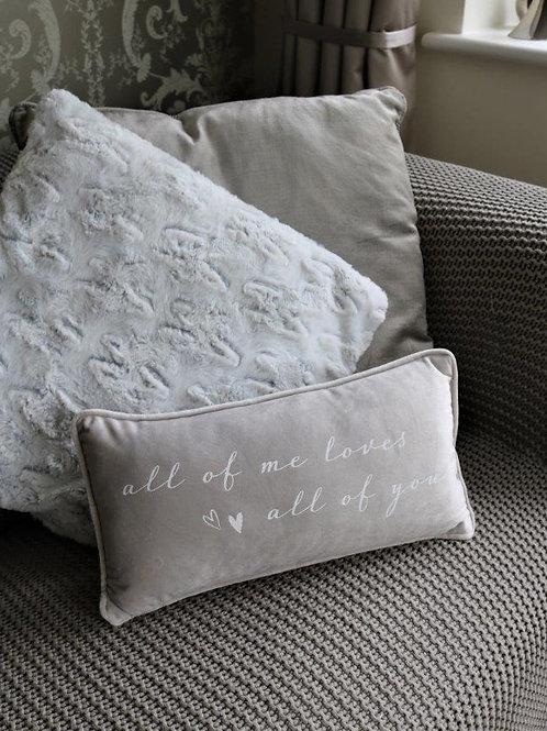 'All of Me' Plush Grey Cushion