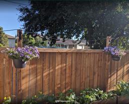 fence_edited.jpg