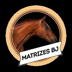 matrizes_BJ.png