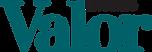 Logo valor economico.png