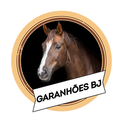Garanhões_BJ.png