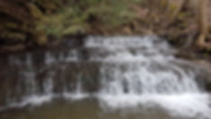 Small-cascade-on-the-Effingham-Branch-at