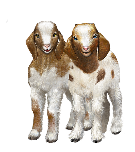 Lilly & Milly goats v1.png