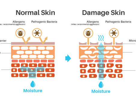 Enhance our skin defence barrier function