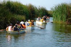 Pantanos de Villa / Villa swamps