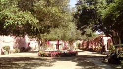 Viña Tacama / Tacama vineyard