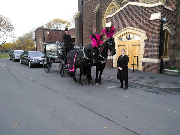 horse drawn hearse.jpg