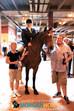 BIG D HORSE SHOW