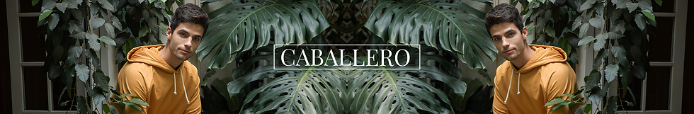 01 caballeros.png