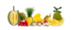 Поставка экзотических фруктов.jpg