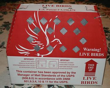 shipping box for birds