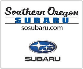 NEW LOGO Subaru-web-logo 300x250 (2)-pag