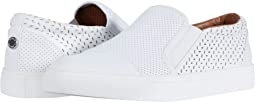 Steve Madden Ambition Sneaker