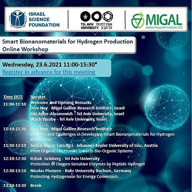 """Lihi is co-organizing the online Workshop of """"Smart Bionanomaterials for Hydrogen Production"""""""