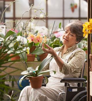 Женщина в инвалидной коляске в оранжерее