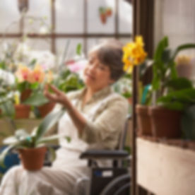Woman in Wheelchair in Greenhouse