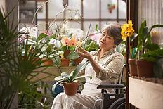jardin ehpad | animation jardin personnes âgées | animateur jardin maison de retraite et foyer logement | amboise | loches