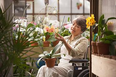 Mujer en silla de ruedas en invernadero