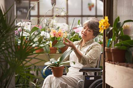 Frau im Rollstuhl im Gewächshaus