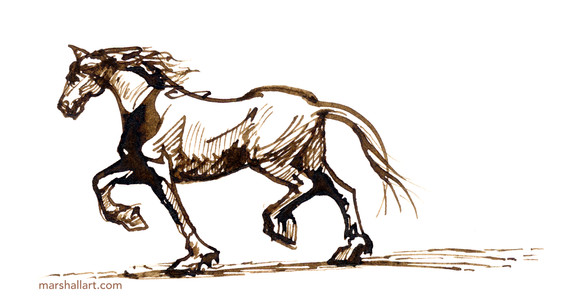 marshall_horse1.jpeg