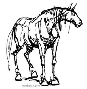 marshall_horse4.jpeg
