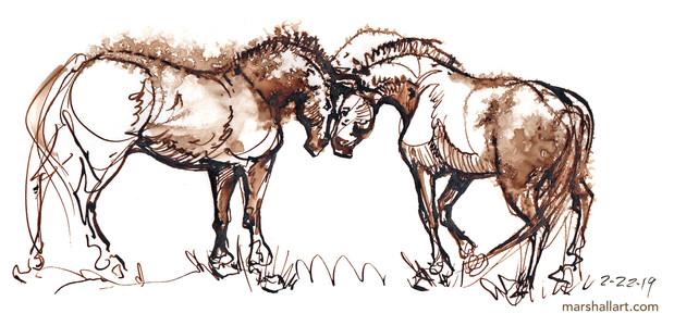 marshall_horse4.jpg