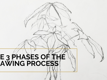 The 3 Phases Of The Drawing Process