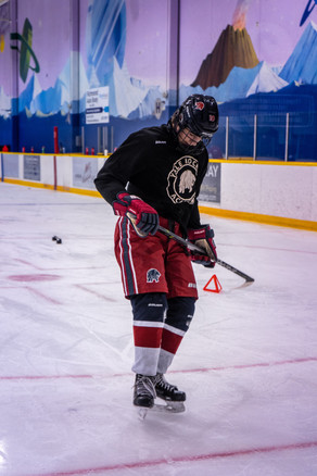 Sully Menard Hockey.jpg
