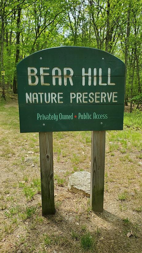summer bear hill sign.jpg