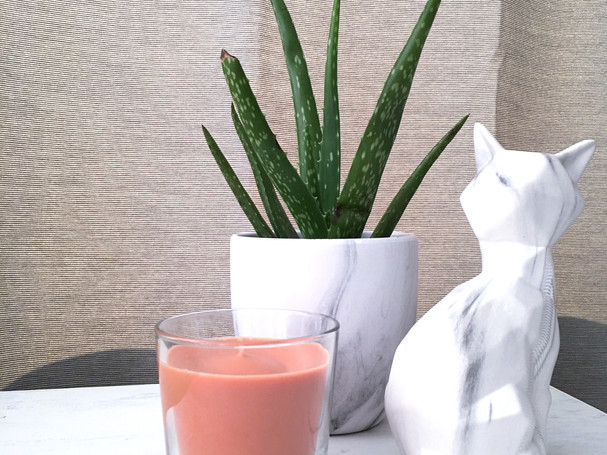 white marble planter with aloe plant, ikea candle and white marble cat decor