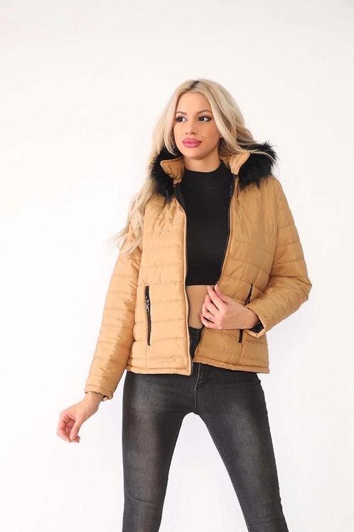 Bumpy Jacket