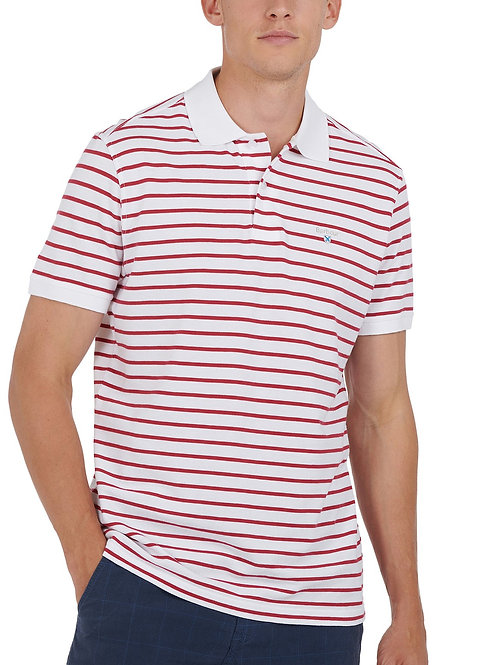 Styhead Stripe Polo