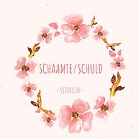 schaamte_schuld.png
