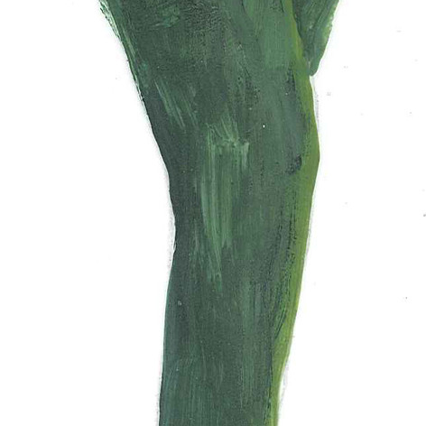 amanda's green pants