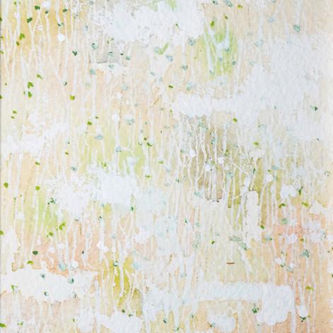 oso201124-3-No.0024
