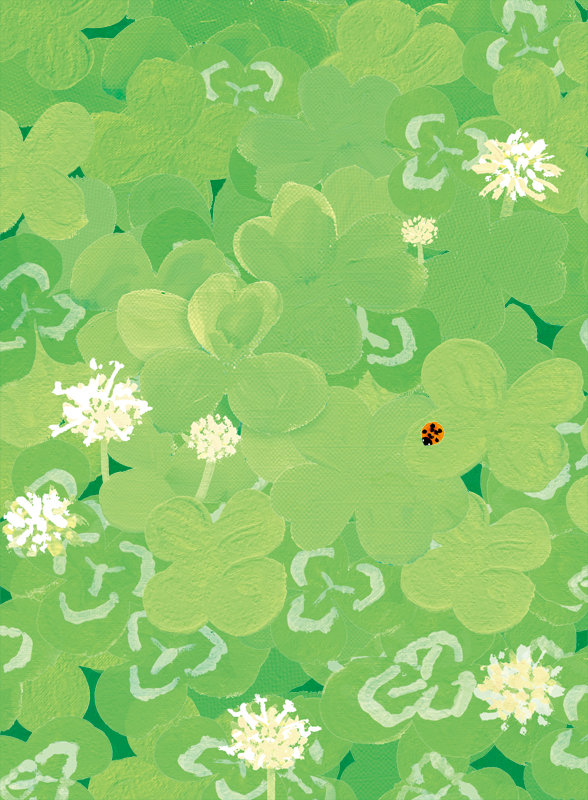 5月 シロツメクサとてんとう虫