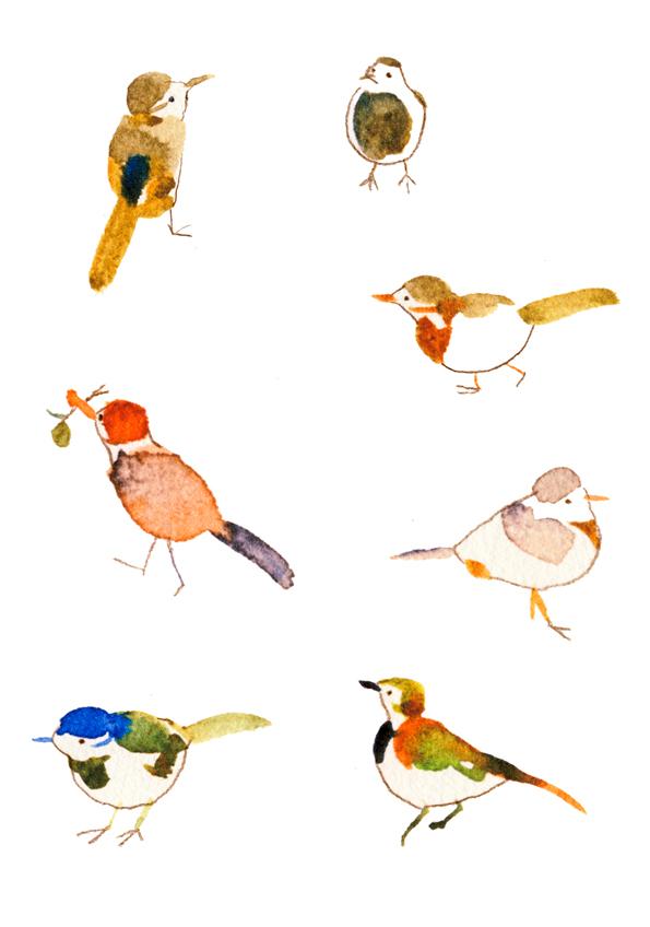 野鳥 02