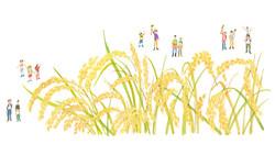 農業 米 稲 イラスト