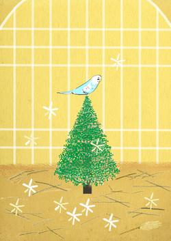 クリスマスのインコ