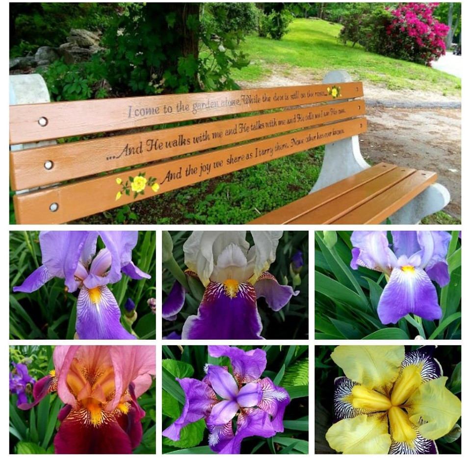 Our Prayer Bench and Flowers
