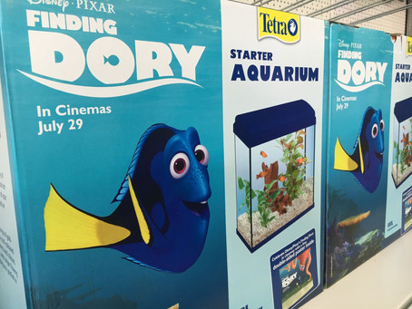 Finding Dory Aquariums Now Available