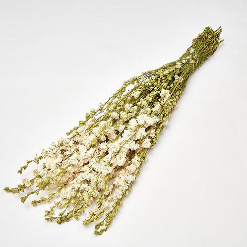 Dried Delphinium Natural White