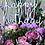 Thumbnail: Sugar Plum Bouquet