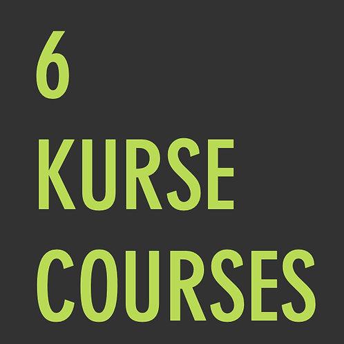 6 Kurse  /  6 Courses
