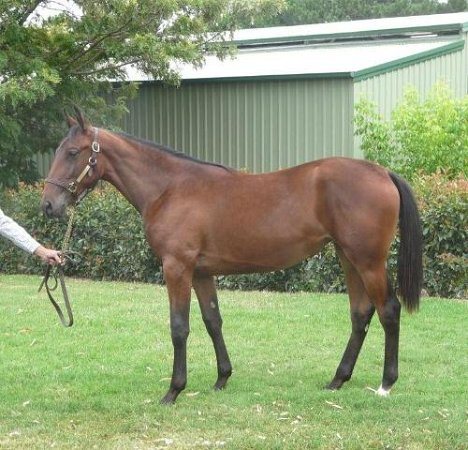 Lot 284 - Meredith Castle