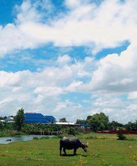 【カンボジアの風景】