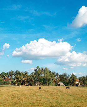 【12月のカンボジアの空】